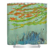 Carysfort Reef Shower Curtain