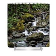 Cascade In The Rainforest Shower Curtain