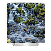Cascade Of Many Waters Shower Curtain