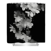 Cascade Of Shadows Shower Curtain