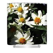 Cascade Of White Flowers Shower Curtain