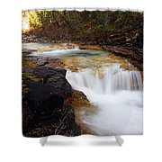 Cascade On Beauty Creek Shower Curtain by Larry Ricker