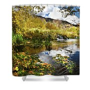 Cascade Springs Large Pool  Shower Curtain