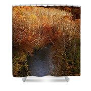 Cascade Valley Afternoon Shower Curtain
