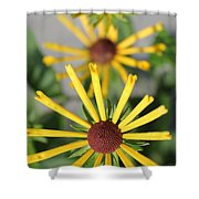 Cascading Shower Curtain