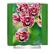 Cascading Miniature Orchids Shower Curtain