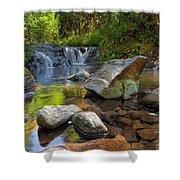 Cascading Waterfall At Sweet Creek Falls Trail Shower Curtain