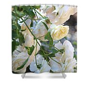 Cascading White Roses Shower Curtain