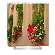 Cascading Windows Shower Curtain
