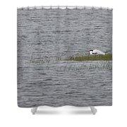 Caspians Shower Curtain