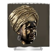 Cast In Character 2013 - Side View Transparent  Shower Curtain