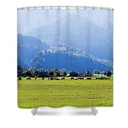Castle And Cattle Shower Curtain