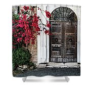 Castle Gate Shower Curtain