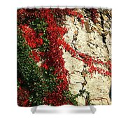 Castle Vines Shower Curtain