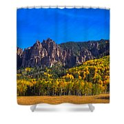 Castles Shower Curtain