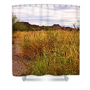 Castolon - A Ghost Town 3 Shower Curtain
