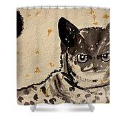 Cat 3 Shower Curtain