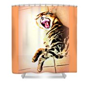 Cat Screaming To Me Shower Curtain