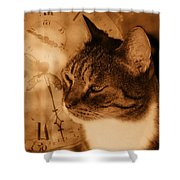 Cat And Clock Shower Curtain