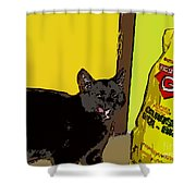 Cat And Rice Shower Curtain