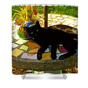 Cat And Table Shower Curtain
