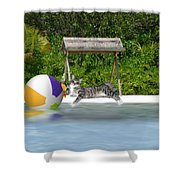 Cat At The Beach Shower Curtain