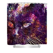 Cat Black View Close  Shower Curtain