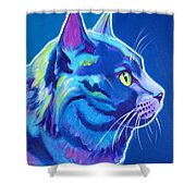 Cat Blue Boy Painting By Alicia Vannoy Call