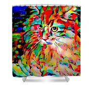 Cat By Fauvism Shower Curtain
