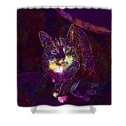 Cat Contemporary Design Brown  Shower Curtain
