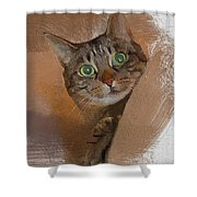 Cat Desire. Shower Curtain
