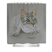 cat drawing - Jackson Shower Curtain