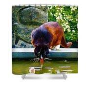 Cat Drinking In Picturesque Garden Shower Curtain