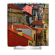 Cat Feed Shower Curtain by Skip Hunt