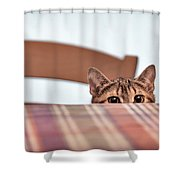Cat Hiding Under The Table Shower Curtain