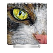Cat In Pastel Shower Curtain