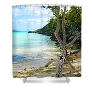 Cat Island Cove Shower Curtain