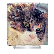 Cat Jasper Shower Curtain