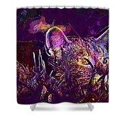 Cat Kitten Mieze Tiger Cat  Shower Curtain