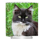 Cat Lawrence Shower Curtain