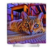 Cat Laying On Braided Rug Shower Curtain