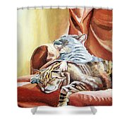 Cat Nap Shower Curtain