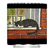 Cat Nap In Window Shower Curtain