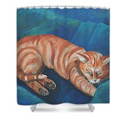 Cat Napping Shower Curtain
