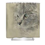 Cat, Nikita Il Gatto. Shower Curtain