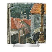 Cat Of The Town Of Kotor Shower Curtain