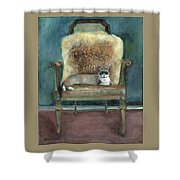Cat On A Chair Shower Curtain