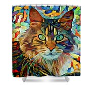 Cat On Colors Shower Curtain