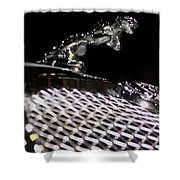 Cat Over The Grille Shower Curtain