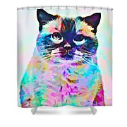 Cat Picture Shower Curtain